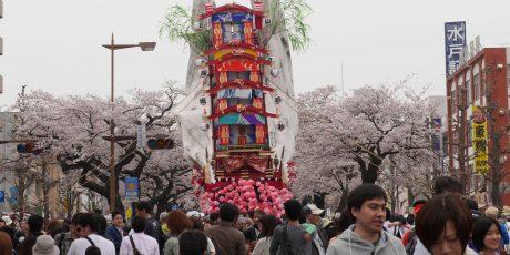 Hitachi Sakura Fest