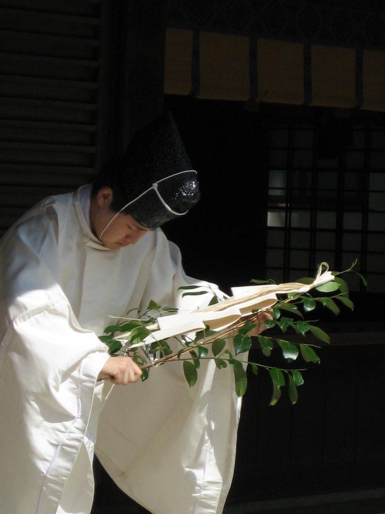 Meiji Jingu - Meiji Jingu