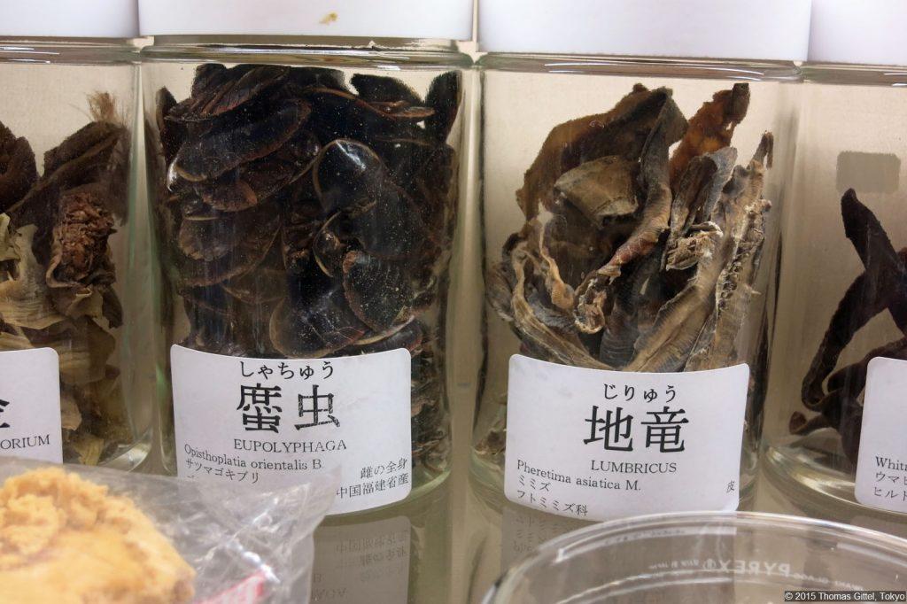Kitasato Institut: Museum für Kampō-Medizin - Führung durch das Museum für Kampō-Medizin
