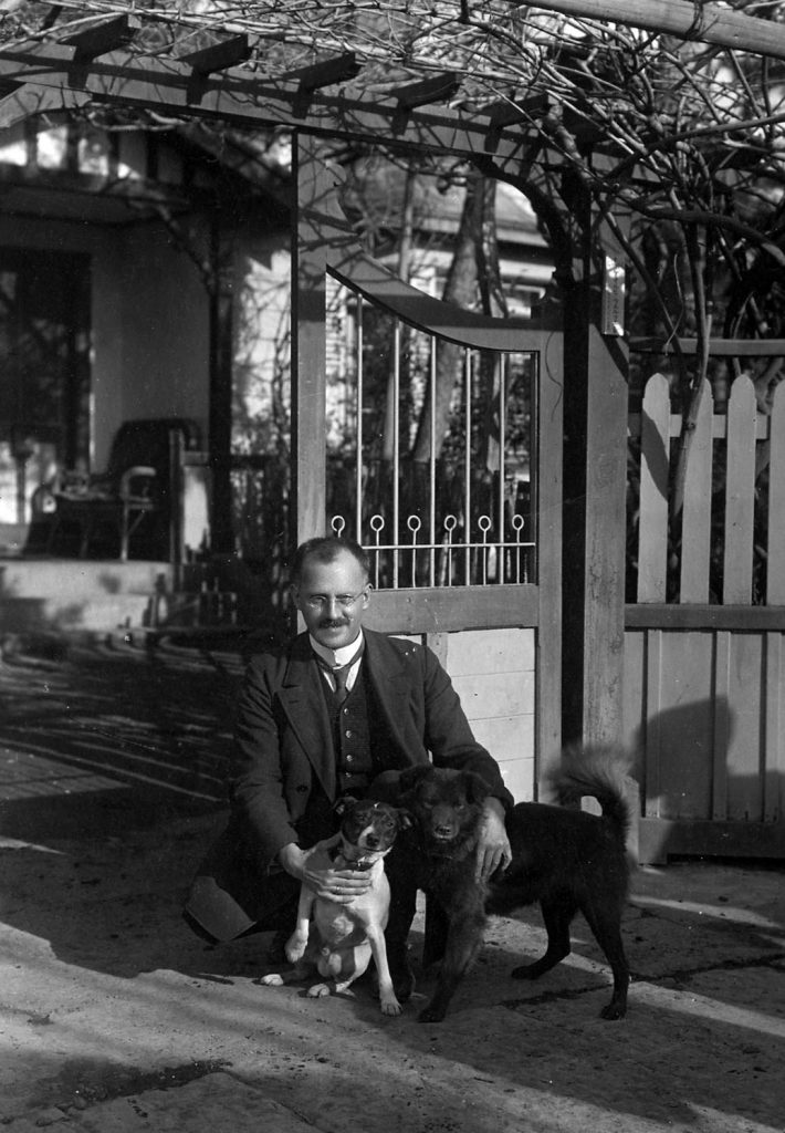 Würfel+Hund