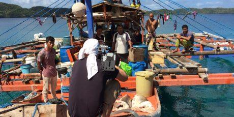 Reportage: Räuber im Paradies ‒ Haijagd rund um Palau