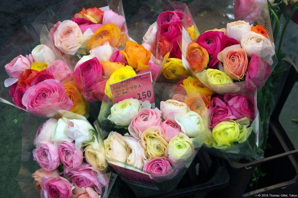 P2198434 Ota Flower Market