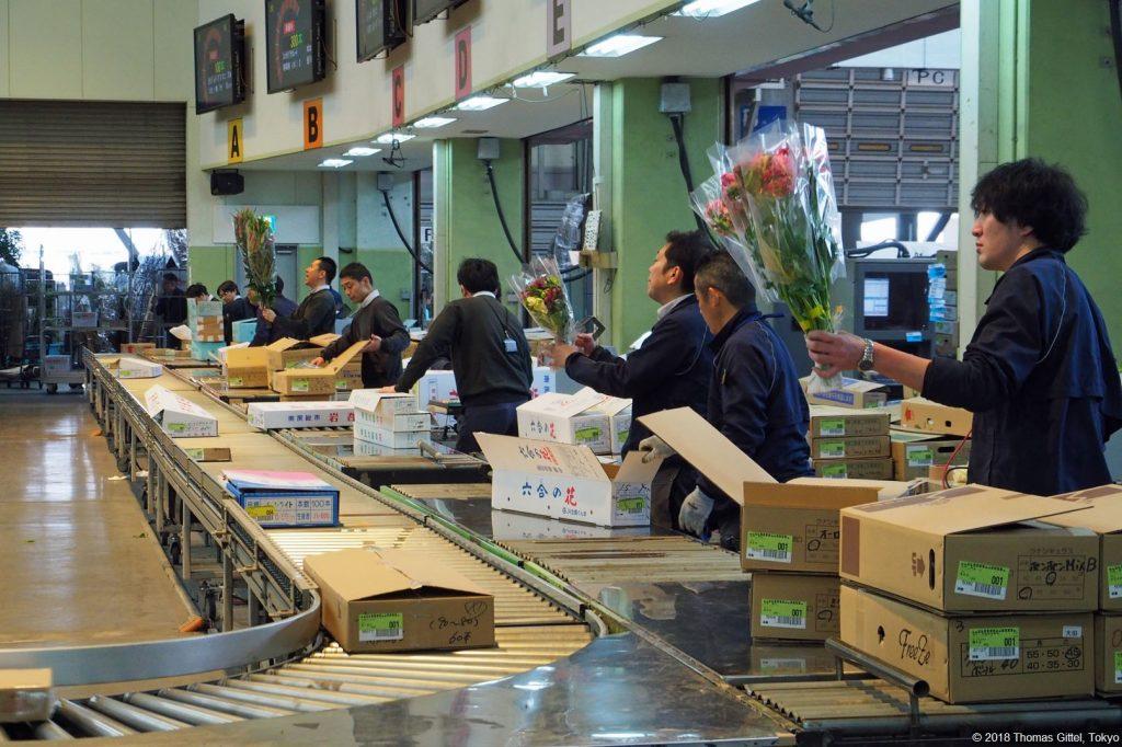 P2198436 Ota Flower Market