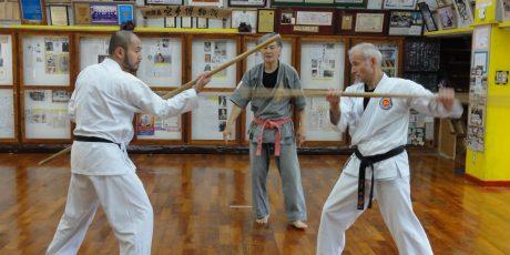 """Dr. Wolfgang Herbert: """"Aus Okinawa nach Olympia: Geschichte und Zukunft des Karate-dō"""""""