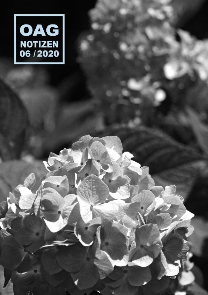 OAG202006_D20