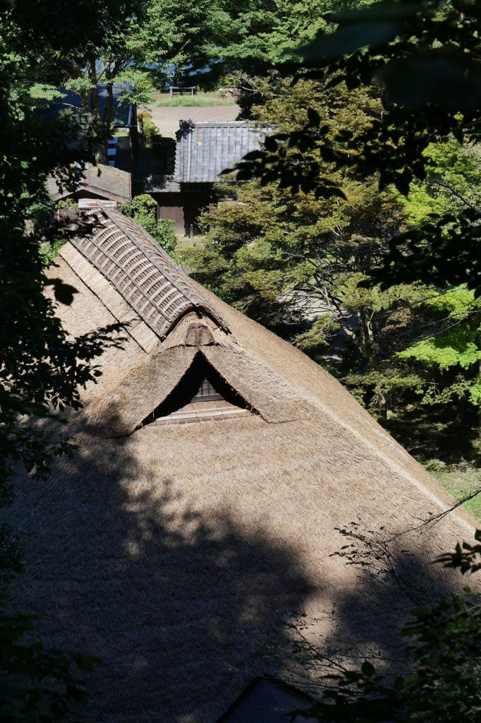 P1210173 Machida Yakushiike Koen